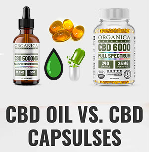 CBD Softgels vs Oil