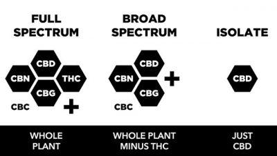 broad spectrum vs full spectrum vs CBD isolate